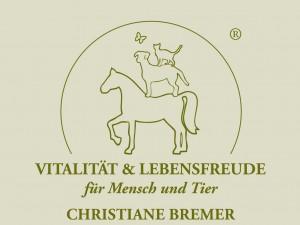 THP_Bremer_Logo